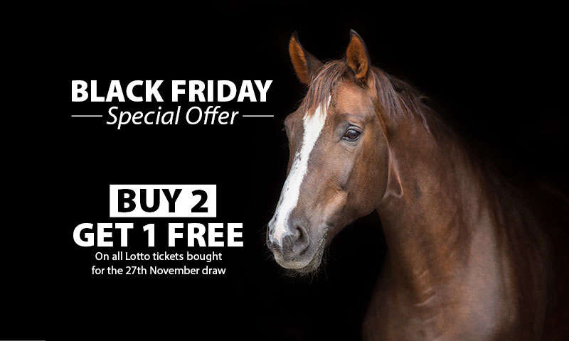 BLACK FRIDAY SPECIAL OFFER - BUY 2 GET 1 FREE On all Lotto tickets bought for the 27th November draw
