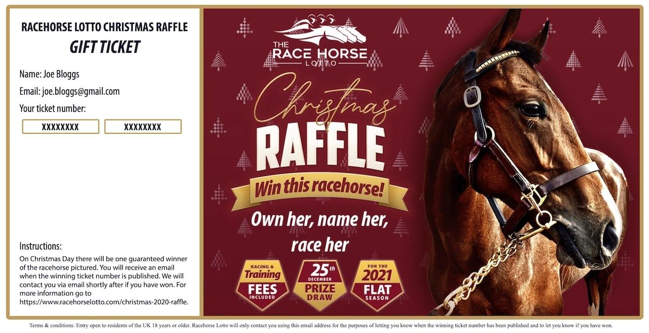 Racehorse Lotto Christmas Raffle example gift ticket